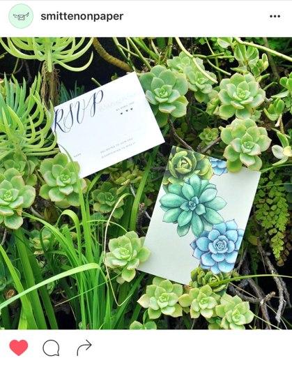 succulents-rsvp